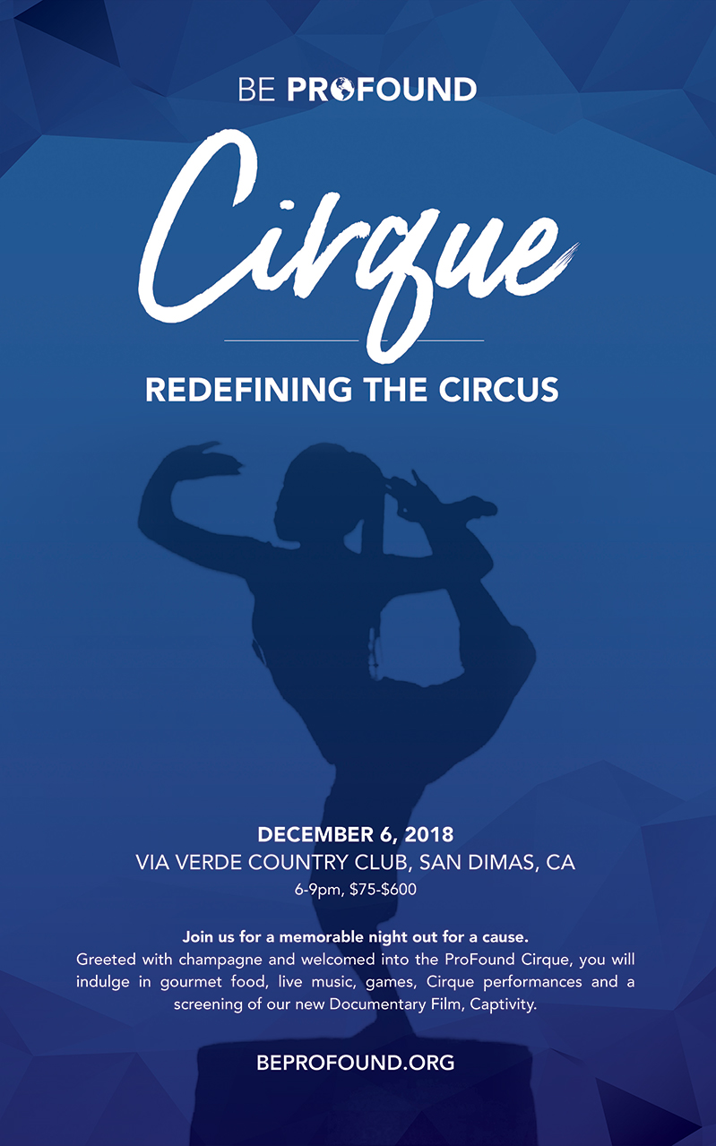 redefining the circus with profound cirque